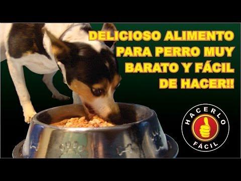 Como Hacer Un Delicioso Alimento Para Perro | Hacerlo Fácil