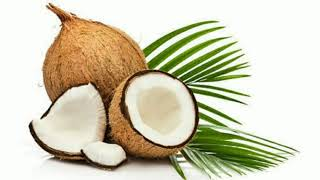 World Coconut Day - Download this Video in MP3, M4A, WEBM, MP4, 3GP