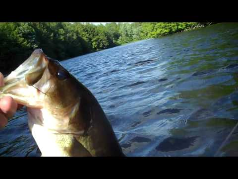 Fishing Taylor Pond with the Bass Zombies.mp4