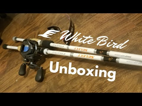 Casting Rod Review | Fishing Equipment: Many Fishing Gear