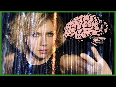 Nutzen wir nur 10% unseres Gehirns?