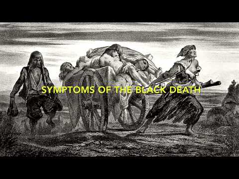 Video what is the Black Death/ causes and symptoms