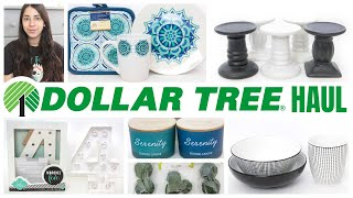 DOLLAR TREE HAUL JUNE 2020 AWESOME NEW FINDS