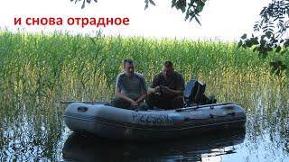 Рыболовные базы на отрадном озере