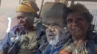 VIDEO: Territory NRM goes to the Kiwirrkurra Ninu (Bilby) Festival