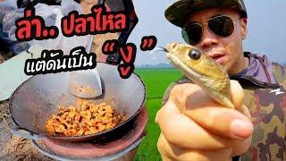 ล่าปลาไหล แต่ดันเจอ งู !! 18+  [หัวครัวทัวร์ริ่ง] EP.24