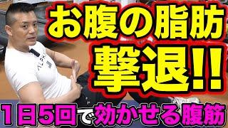 【中高年の簡単筋トレ】夏までにお腹やせ!「逆腹筋」