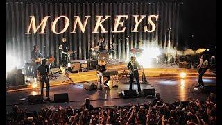 Knee Socks - Arctic Monkeys live @ Cavea Auditorium, Rome