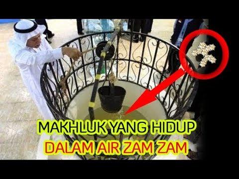 INILAH YANG BELUM ANDA KETAHUI #2 - Berita Islam Terkini