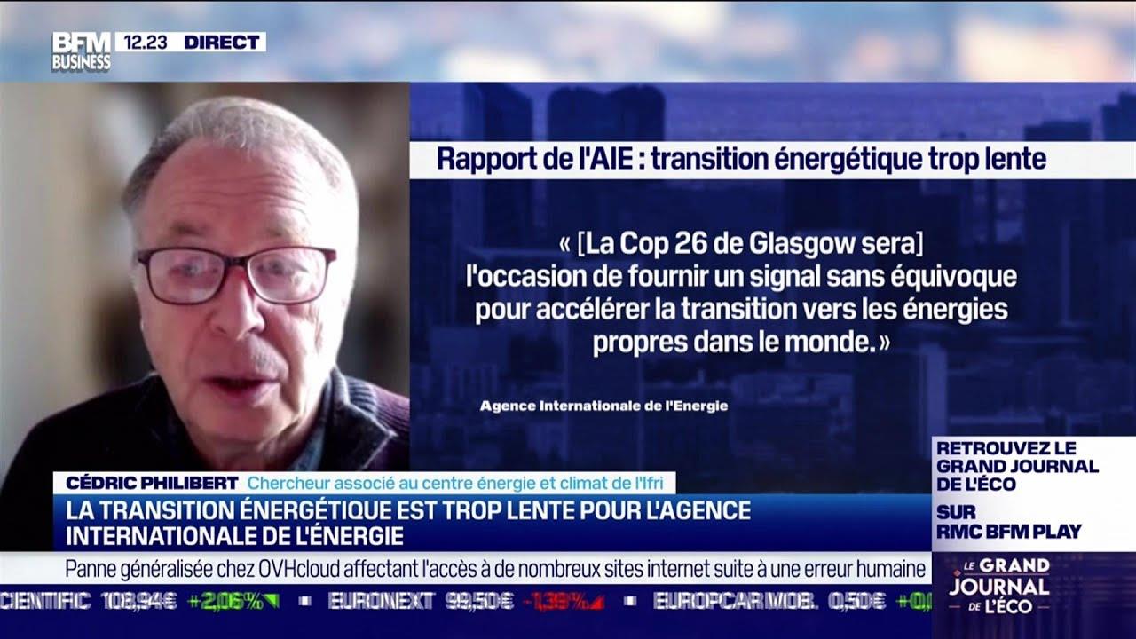 Cédric Philibert (Ifri): La transition énergétique, trop lente pour l'AIE