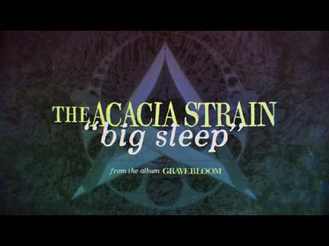 The acacia strain continent lyrics