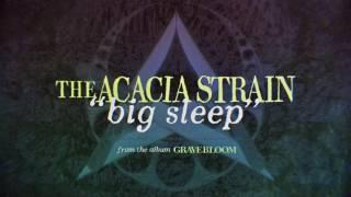The Acacia Strain - Big Sleep