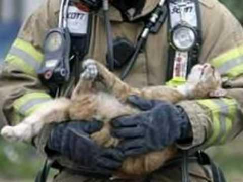 sex xxx firemen