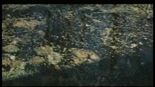 Страх высоты - музыка Эдуарда Артемьева, фрагмент 1