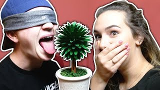 EXTREME BLIND LICKING CHALLENGE *DON'T TRY THIS*