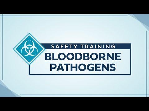 Service Training - Bloodborne Pathogens