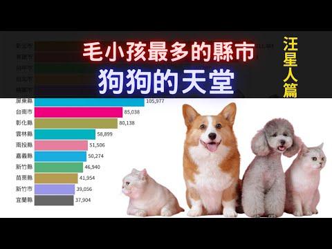 毛小孩最多的縣市 汪星人篇 | 最喜歡狗的縣市 狗狗的天堂在哪裡 |家犬數最多的縣市 2003~2019