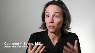 Understanding the Effect of Zika Virus on Pregnancy