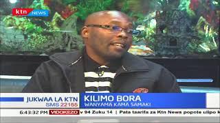 KILIMO BORA | Kilimo cha Aquaponics kinachojumuisha mimea na wanyama pt2