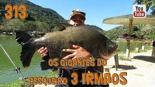 Programa Fishingtur na TV 313 - Pesqueiro 3 Irmãos