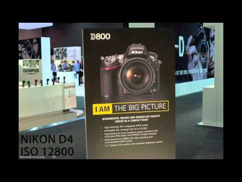 Nikon D4 vs D800 - HIGH ISO