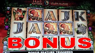 The Wildlife Video Slot Machine Big Win 123vid
