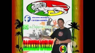 Paula Cendejas   Despacito Theemotion Reggae Remix