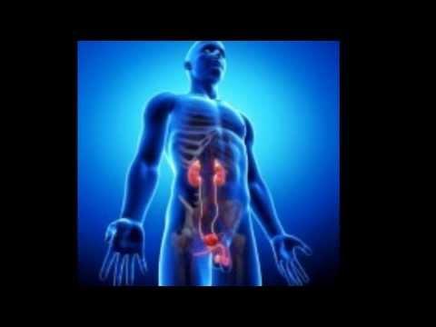Test di malattie della prostata