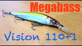 Megabass Vision 110+1 Review + Underwater Footage