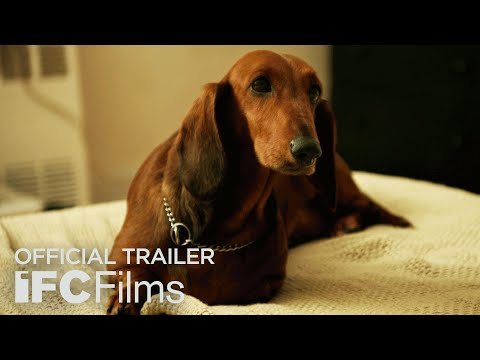 Wiener-Dog - Official Trailer I HD I IFC Films