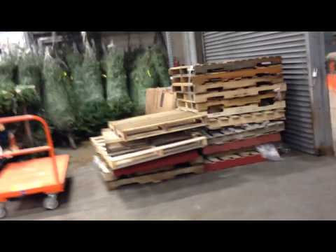 Christmas Trees At Home Depot