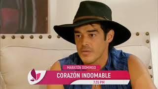 Maratón Juvenil  | Corazón Indomable Domingo 21 De Octubre #tlnovelas