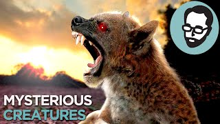 5 Cryptids That Could Actually Exist | Random Thursday