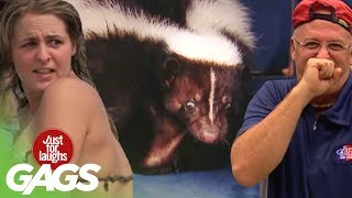 Best Skunk Pranks - Best of Just For Laughs Gags