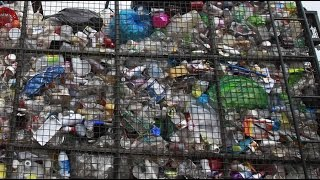 Scientists discover plastic eating bacteria that could save the environment Video