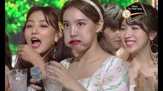 just nayeon things | #HappyNayeonDay