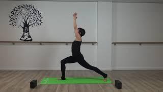 Vinyasa Yoga #2 With Imelda