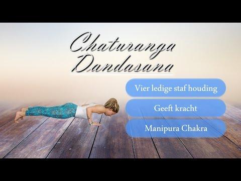 , title : 'Step by Step   Chaturanga Dandasana, vier ledige staf houding'