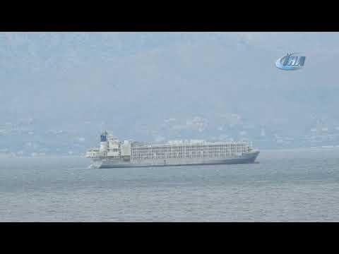 Şarbonlu olduğu iddia edilen gemi hakkında bakanlıktan açıklama