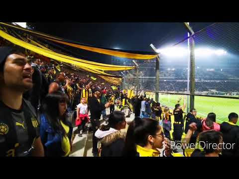 """""""Hinchada De Peñarol Vs. Cerro Largo / 🖤💛La Unica Hinchada Que Gana Partidos💛🖤"""" Barra: Barra Amsterdam • Club: Peñarol"""