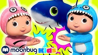 Baby Shark Dance   ABCs 123s   Cartoons and Kids Learning Songs   Little Baby Bum Rhymes