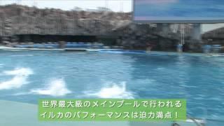 名古屋港水族館〈2012年7月公開〉