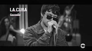 Gazzelle, Omaggia Battiato Con 'La Cura': Il Live Acustico Al Macro Asilo Per Musica Da Asporto