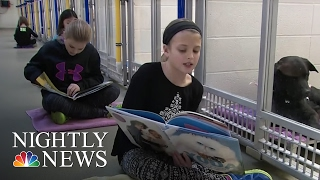 Children Help Get Shelter Dogs' Tails Wagging By Reading to Them | NBC Nightly News