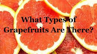 What Type of Grapefruits Are There