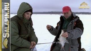 Ловля леща на течений зимой