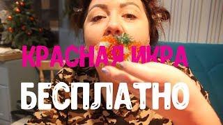 Красная икра - Бесплатно/Боня и Кузьмич лайфхак