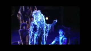 Lisa Hopkins Seegmiller as Grizabella sings Memory from Andrew Lloyd-Webber's Broadway Musical CATS