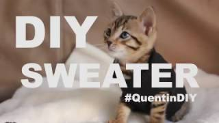 Mengubah Pakaian Bekas untuk Kucing Anda