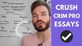 How to Analyze 4th Amendment Seizures of a Person on a Criminal Procedure Essay